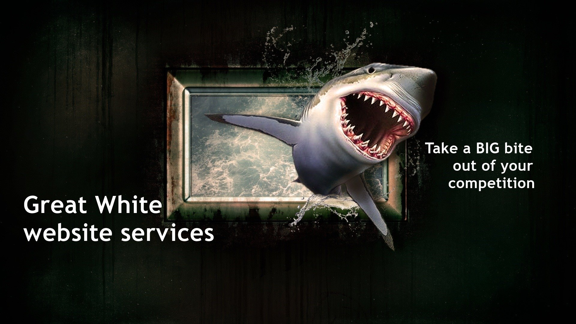 Great White Website Services